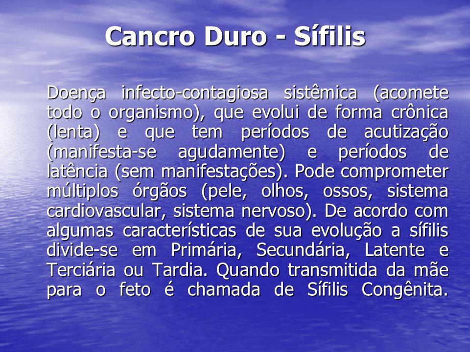 Cancro Duro - Sífilis