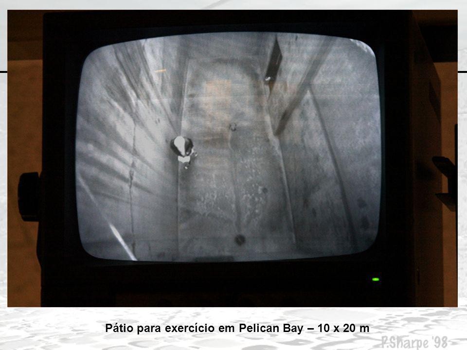 Pátio para exercício em Pelican Bay – 10 x 20 m