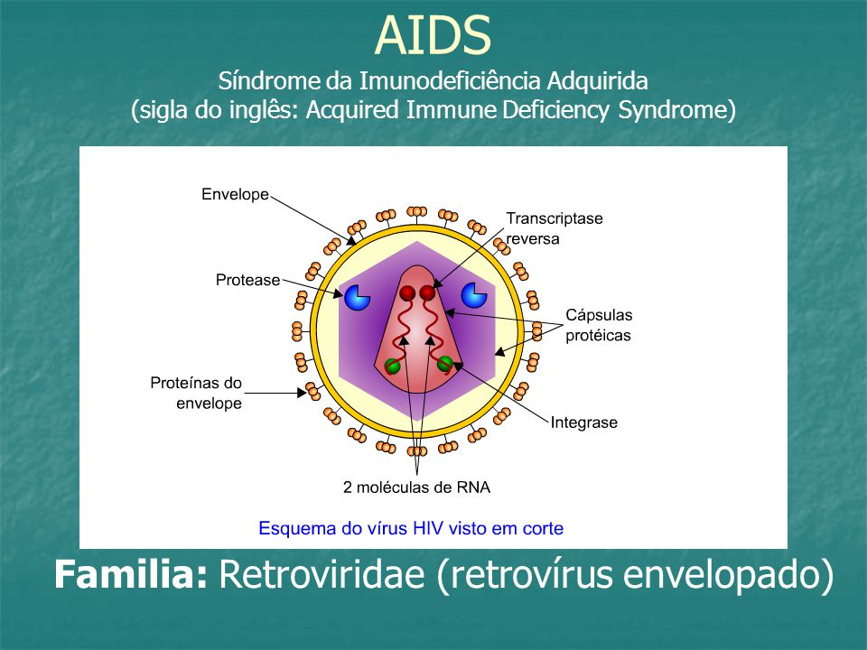 AIDS Síndrome da Imunodeficiência Adquirida (sigla do inglês: Acquired Immune Deficiency Syndrome)