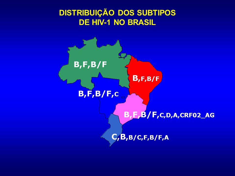 DISTRIBUIÇÃO DOS SUBTIPOS DE HIV-1 NO BRASIL