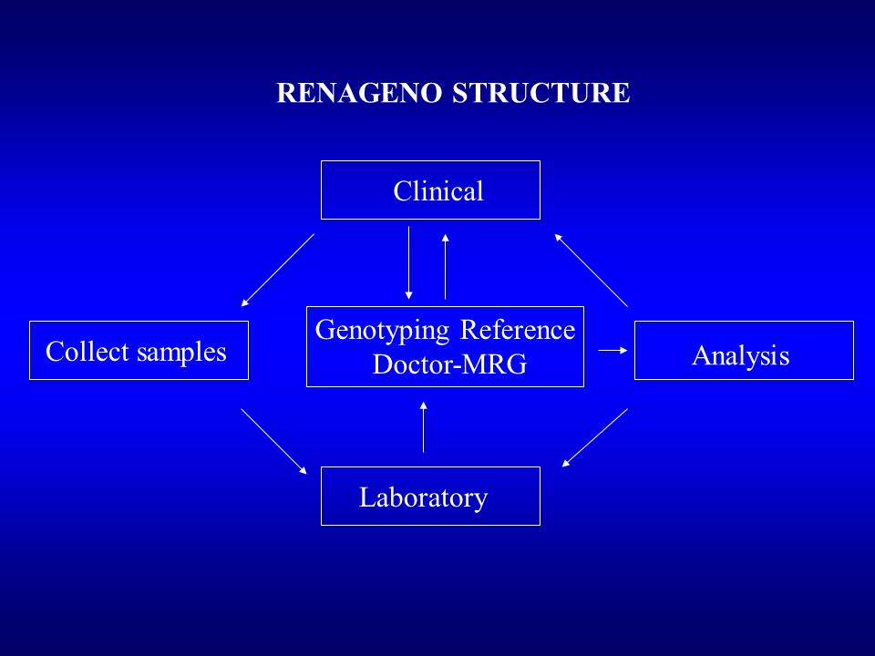 RENAGENO STRUCTURE Clinical Genotyping Reference Doctor-MRG Laboratory Analysis Collect samples