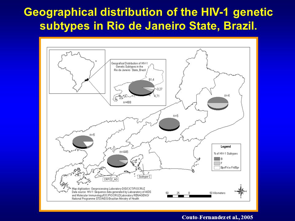 Couto-Fernandez et al., 2005 Geographical distribution of the HIV-1 genetic subtypes in Rio de Janeiro State, Brazil.