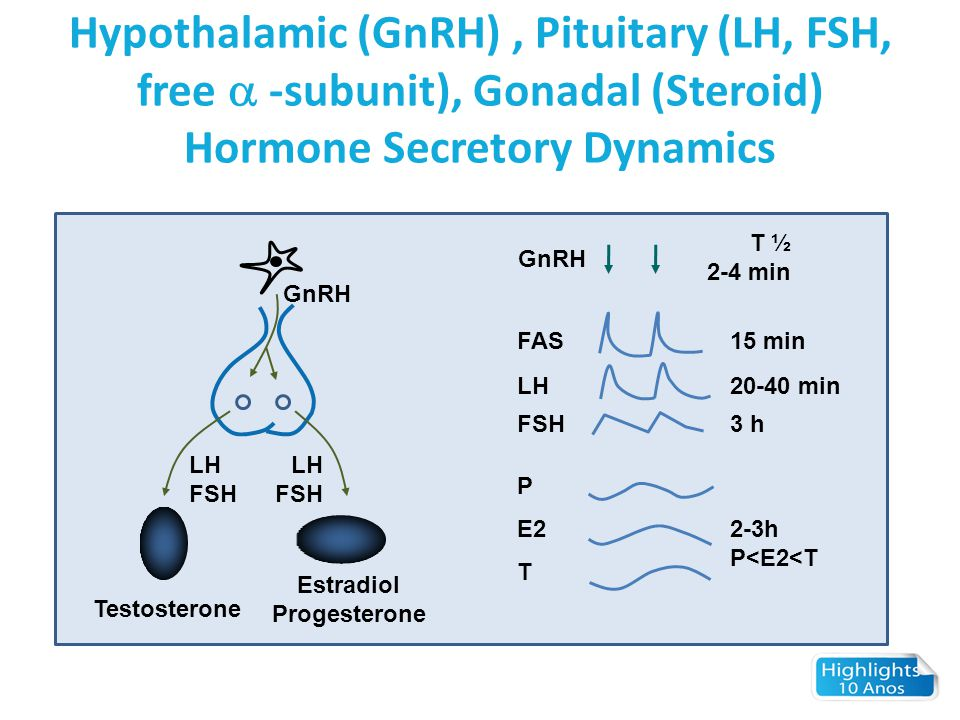 Hypothalamic (GnRH) , Pituitary (LH, FSH, free  -subunit), Gonadal (Steroid) Hormone Secretory Dynamics
