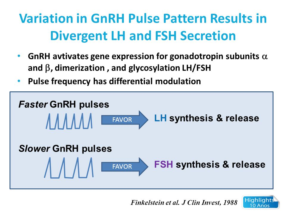Variation in GnRH Pulse Pattern Results in Divergent LH and FSH Secretion
