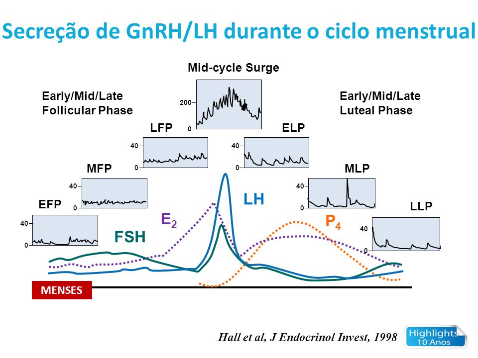 Secreção de GnRH/LH durante o ciclo menstrual