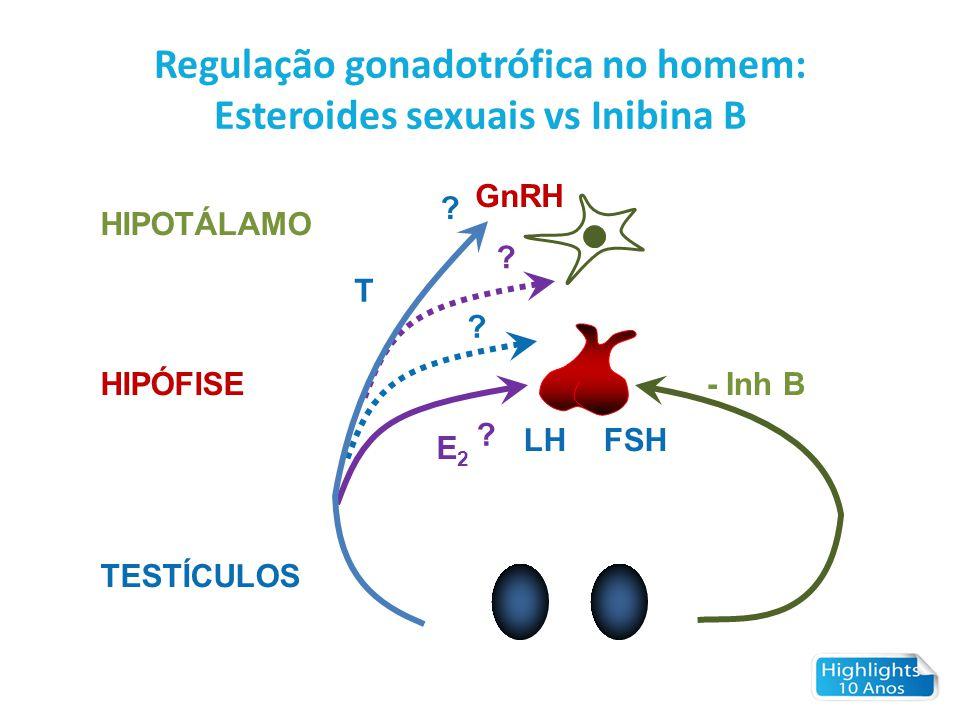 Regulação gonadotrófica no homem: Esteroides sexuais vs Inibina B