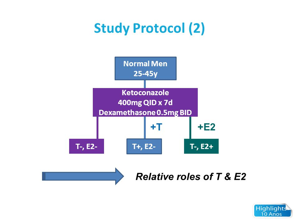 Study Protocol (2) +T +E2 Relative roles of T & E2 Normal Men 25-45y