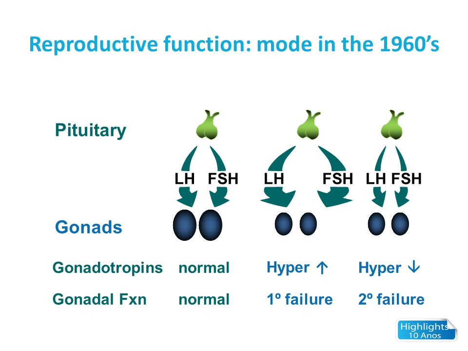 Reproductive function: mode in the 1960's