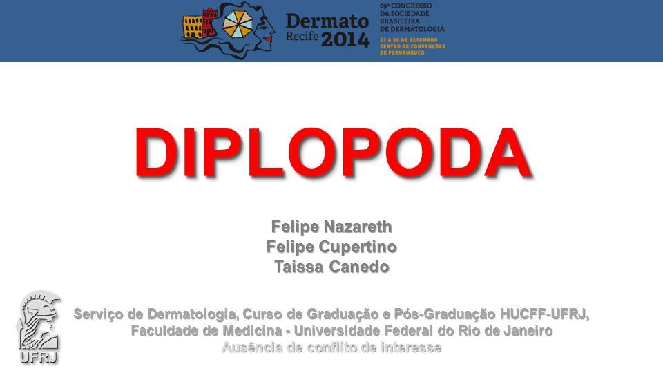 DIPLOPODA Felipe Nazareth Felipe Cupertino Taissa Canedo