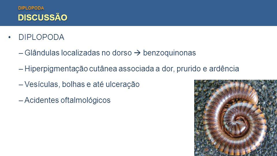 DISCUSSÃO DIPLOPODA Glândulas localizadas no dorso  benzoquinonas