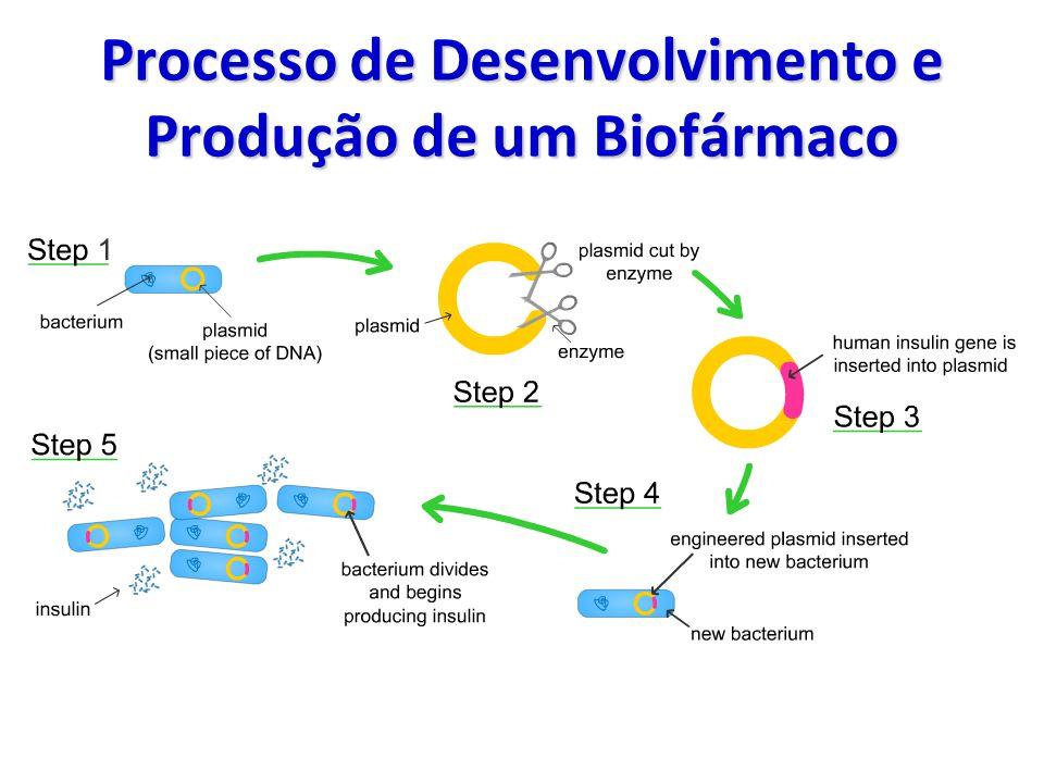 Processo de Desenvolvimento e Produção de um Biofármaco