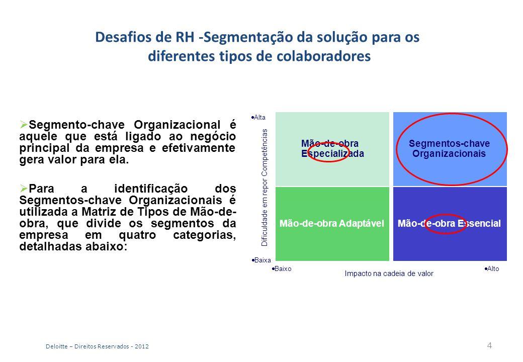 Desafios de RH -Segmentação da solução para os diferentes tipos de colaboradores