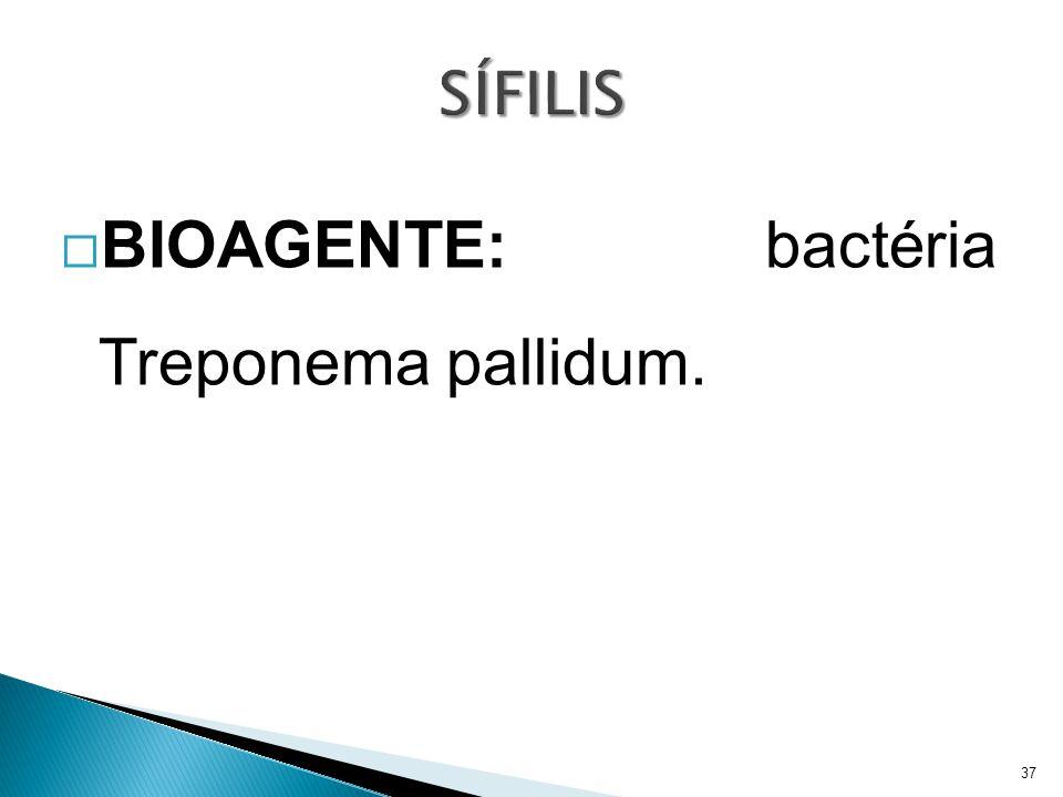 BIOAGENTE: bactéria Treponema pallidum.