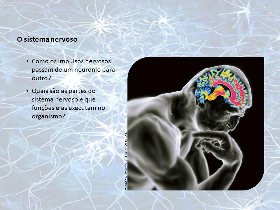 O sistema nervoso Como os impulsos nervosos passam de um neurônio para outro PASIEKA / SCIENCE PHOTO LIBRARY / LATINSTOCK.