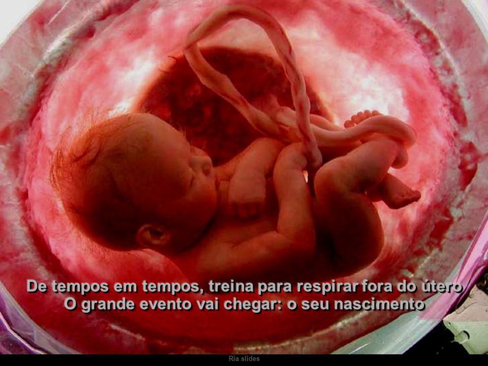 De tempos em tempos, treina para respirar fora do útero O grande evento vai chegar: o seu nascimento