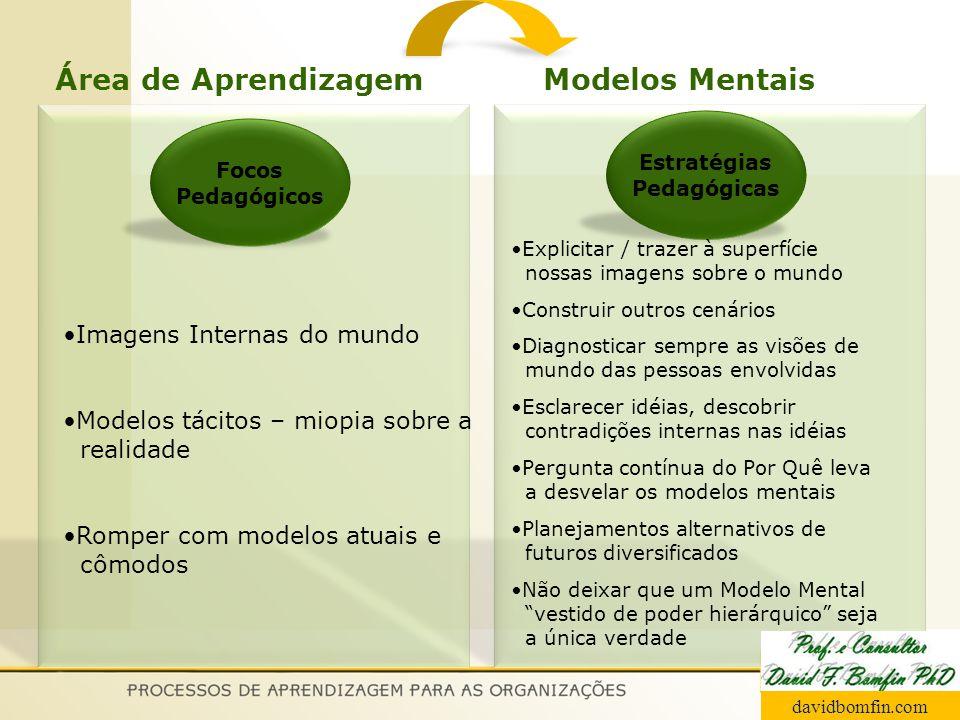 Área de Aprendizagem Modelos Mentais Imagens Internas do mundo