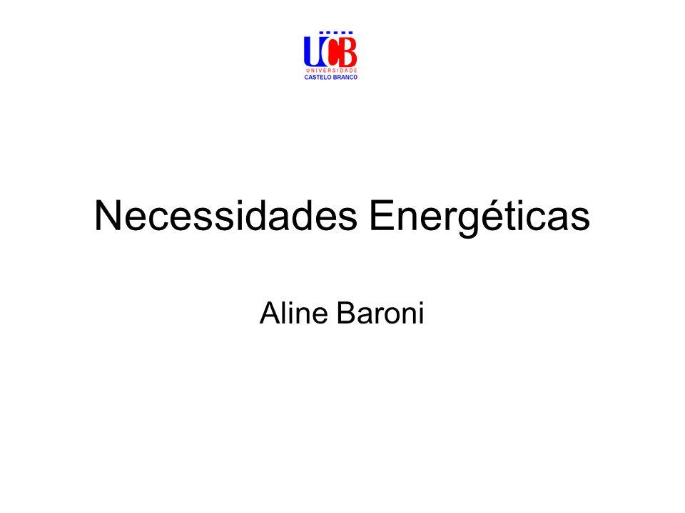 Necessidades Energéticas