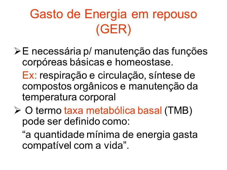 Gasto de Energia em repouso (GER)