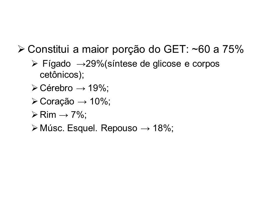 Constitui a maior porção do GET: ~60 a 75%