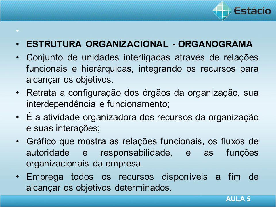ESTRUTURA ORGANIZACIONAL - ORGANOGRAMA