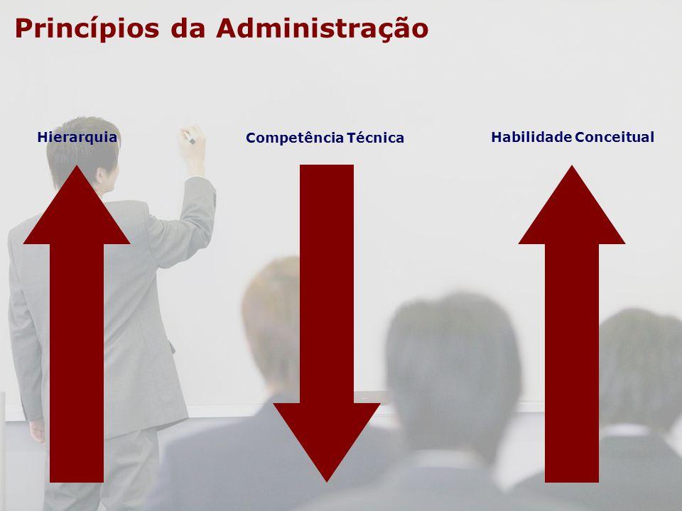 Hierarquia Competência Técnica Habilidade Conceitual