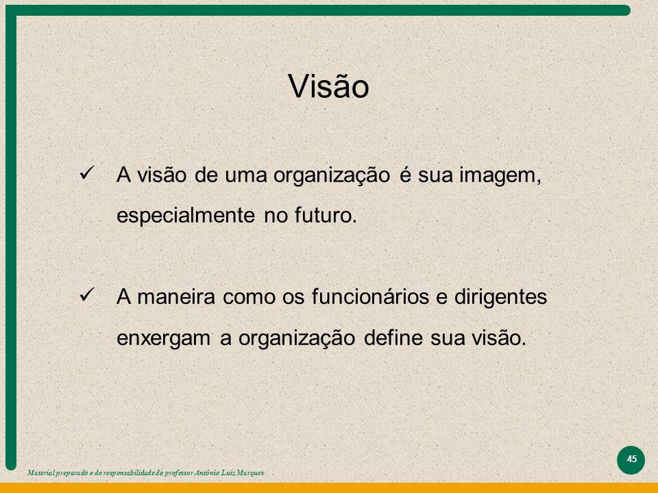 Visão A visão de uma organização é sua imagem, especialmente no futuro.