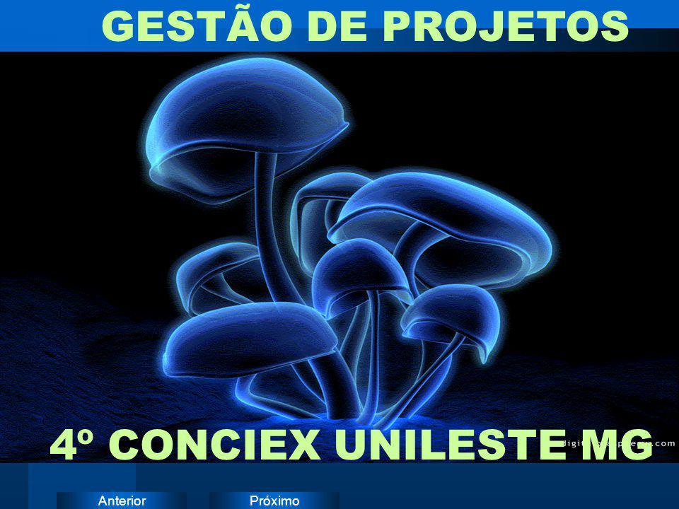 GESTÃO DE PROJETOS 4º CONCIEX UNILESTE MG