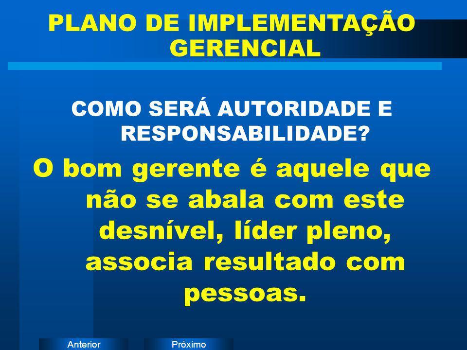 PLANO DE IMPLEMENTAÇÃO GERENCIAL