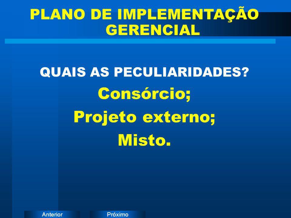 PLANO DE IMPLEMENTAÇÃO GERENCIAL QUAIS AS PECULIARIDADES