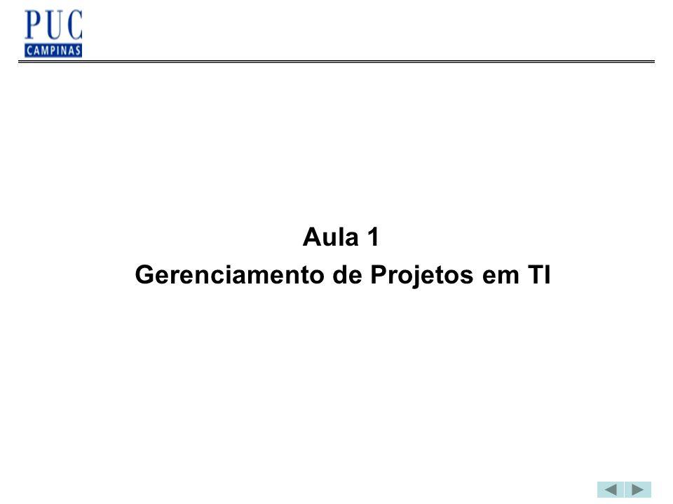Gerenciamento de Projetos em TI