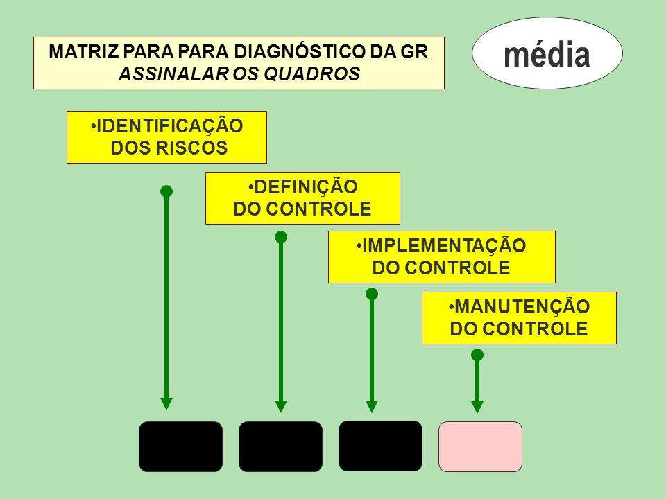 média MATRIZ PARA PARA DIAGNÓSTICO DA GR ASSINALAR OS QUADROS
