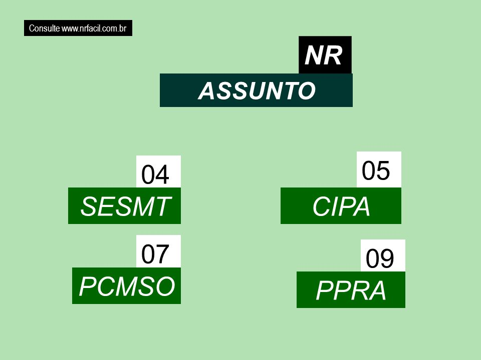 NR 05 04 SESMT CIPA 07 09 PCMSO PPRA ASSUNTO