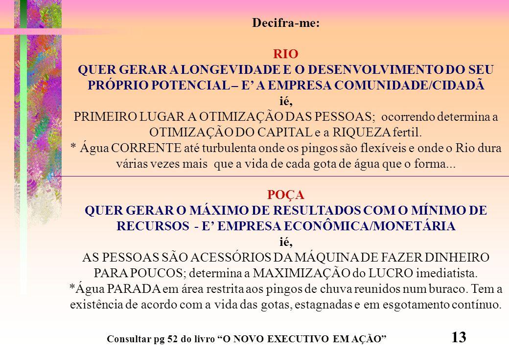 Decifra-me: RIO. QUER GERAR A LONGEVIDADE E O DESENVOLVIMENTO DO SEU PRÓPRIO POTENCIAL – E' A EMPRESA COMUNIDADE/CIDADÃ.