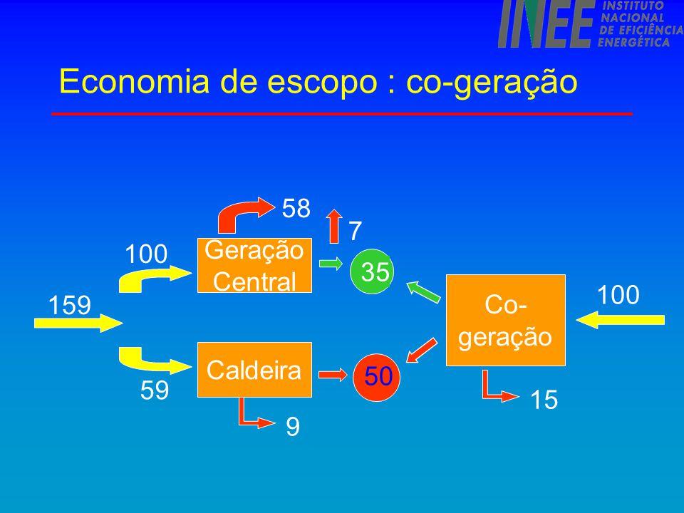Economia de escopo : co-geração