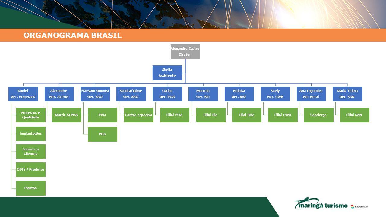 ORGANOGRAMA BRASIL Alexandre Castro Diretor Daniel Ger. Processos