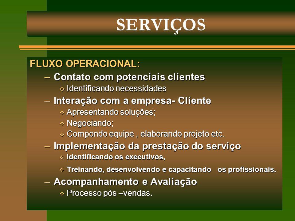 SERVIÇOS FLUXO OPERACIONAL: Contato com potenciais clientes