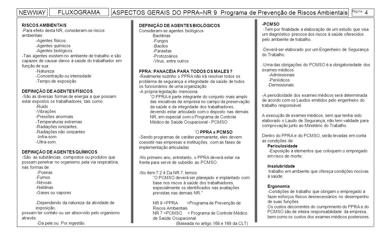 NEWWAY FLUXOGRAMA. ASPECTOS GERAIS DO PPRA–NR 9 Programa de Prevenção de Riscos Ambientais. Página.