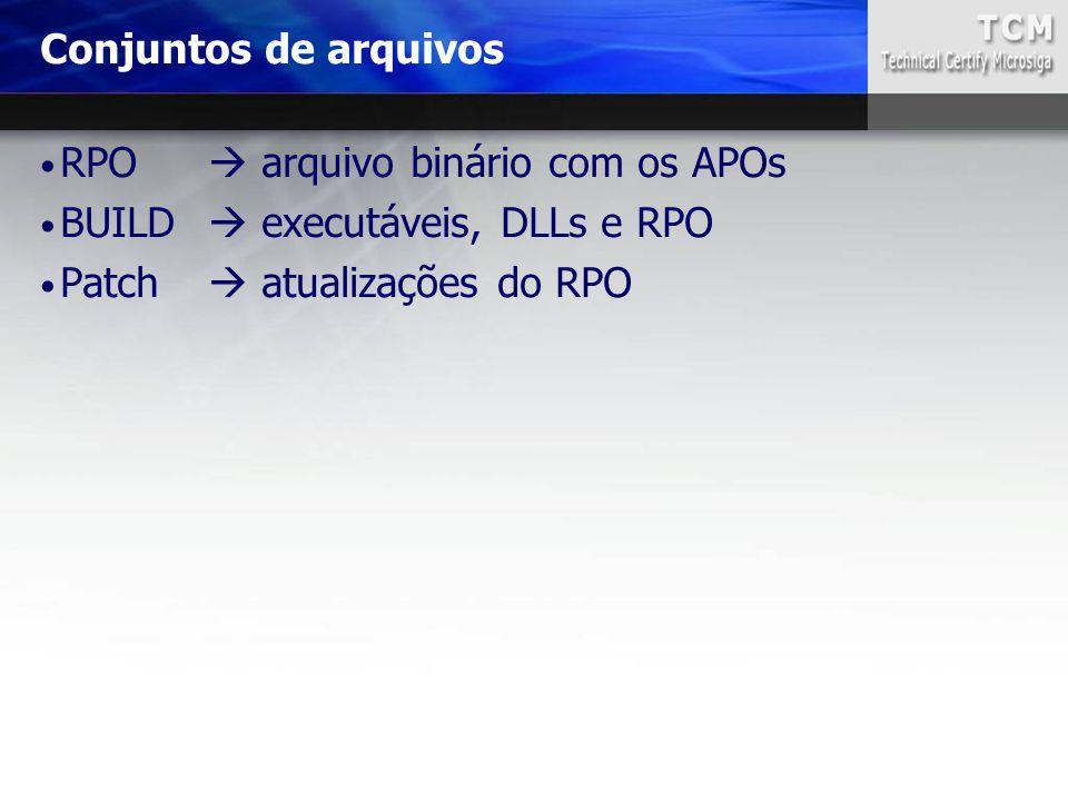 RPO  arquivo binário com os APOs BUILD  executáveis, DLLs e RPO