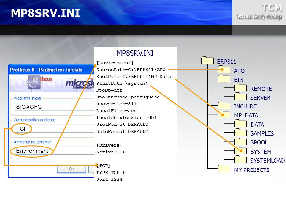 MP8SRV.INI MP8SRV.INI ERP811 APO BIN REMOTE SERVER INCLUDE SIGACFG