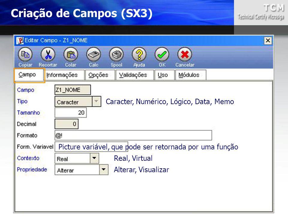 Criação de Campos (SX3) Caracter, Numérico, Lógico, Data, Memo