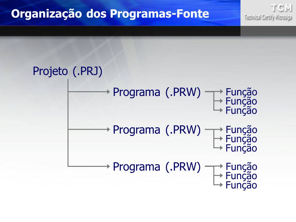 Organização dos Programas-Fonte
