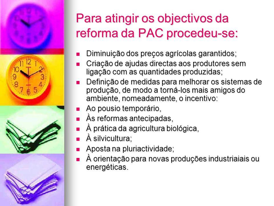 Para atingir os objectivos da reforma da PAC procedeu-se: