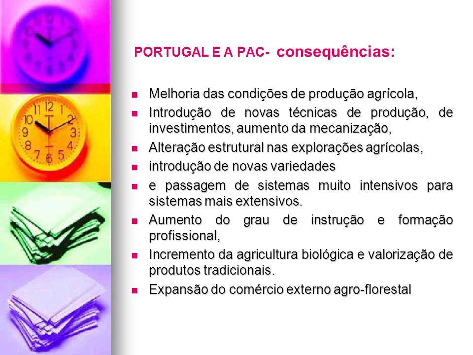 PORTUGAL E A PAC- consequências: