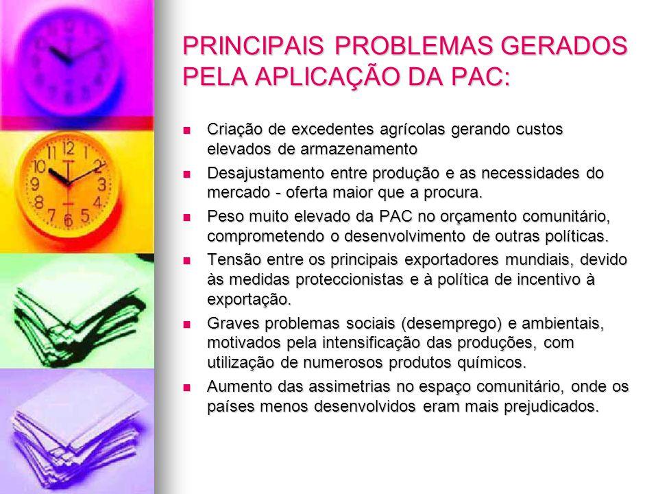 PRINCIPAIS PROBLEMAS GERADOS PELA APLICAÇÃO DA PAC: