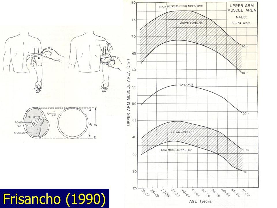 Frisancho (1990)