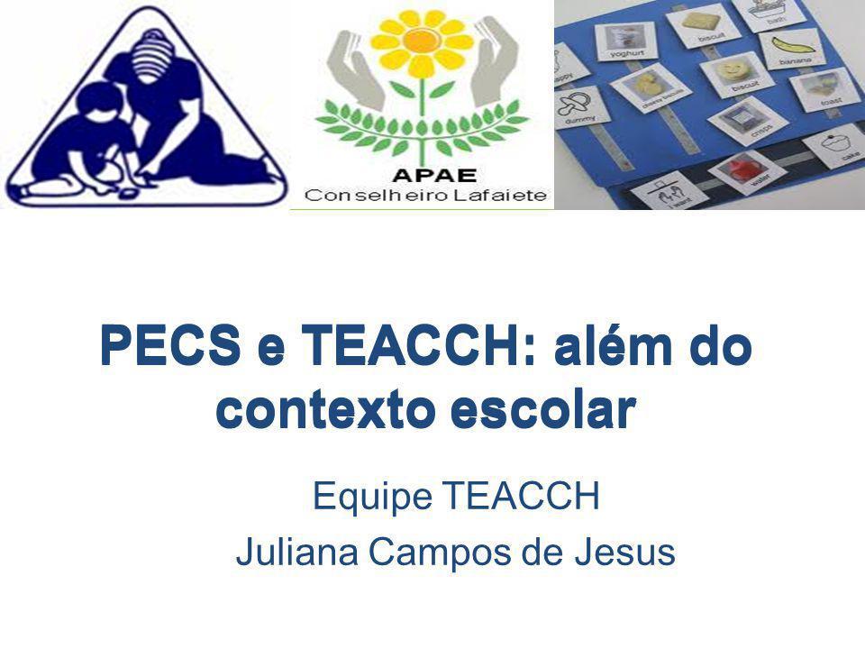PECS e TEACCH: além do contexto escolar
