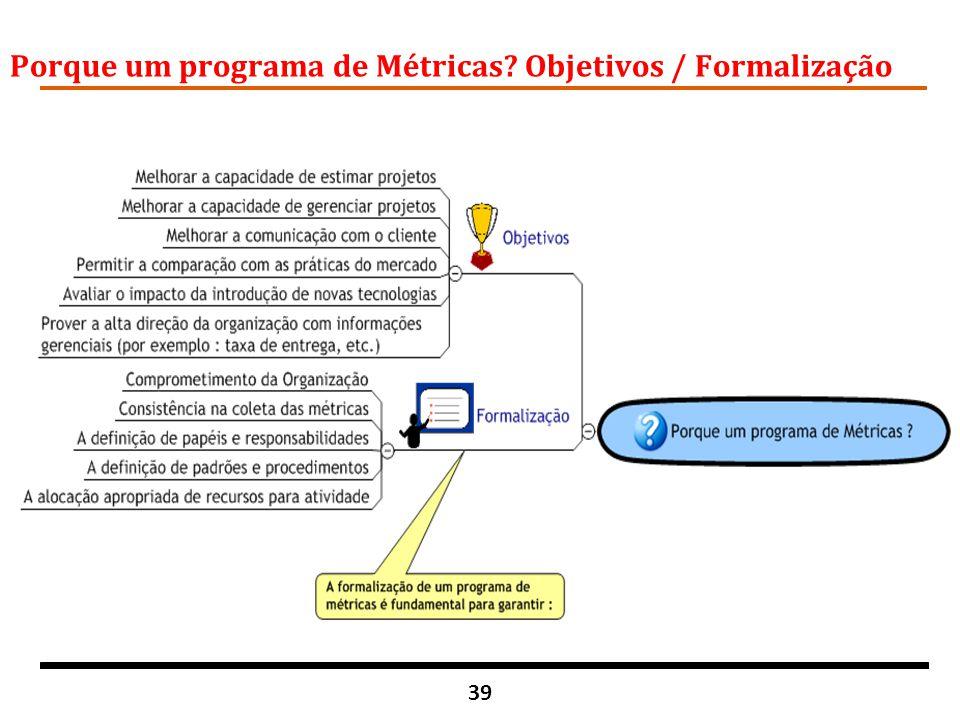 Porque um programa de Métricas Objetivos / Formalização