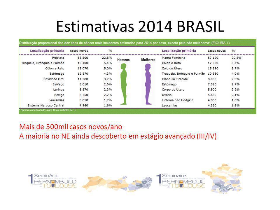 Estimativas 2014 BRASIL Mais de 500mil casos novos/ano