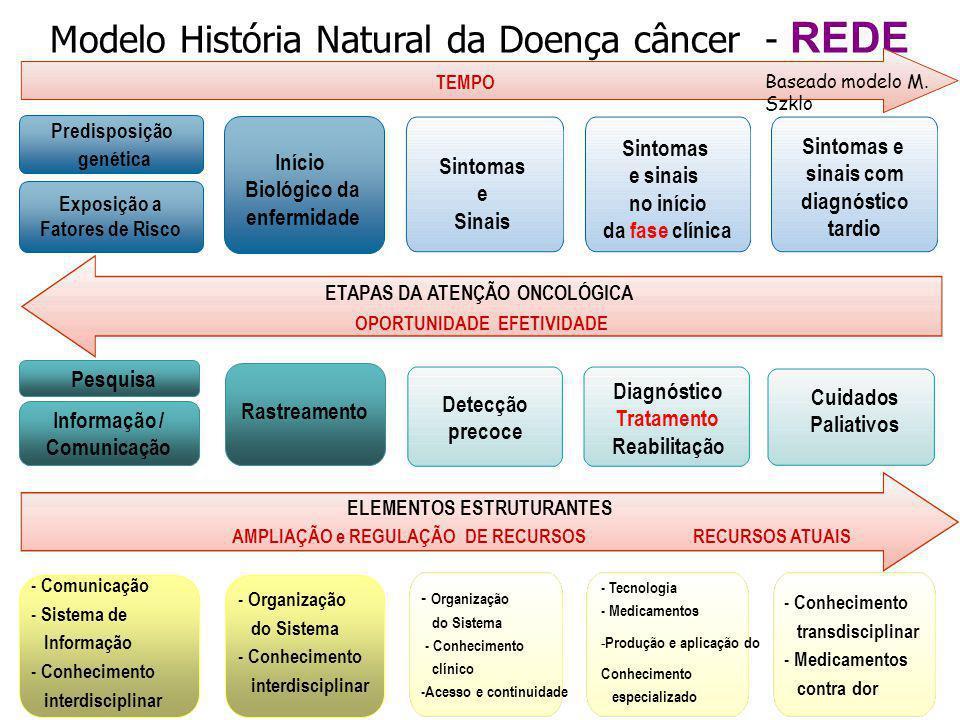 Modelo História Natural da Doença câncer - REDE