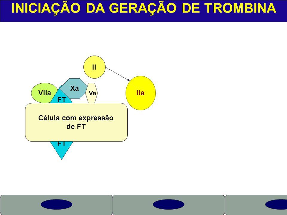 INICIAÇÃO DA GERAÇÃO DE TROMBINA
